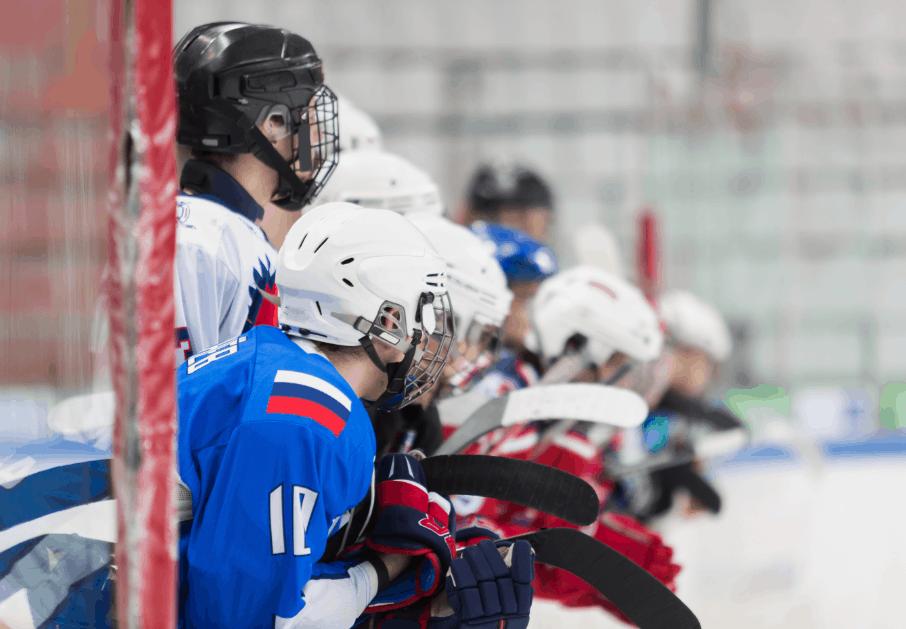FlipGive Hockey image