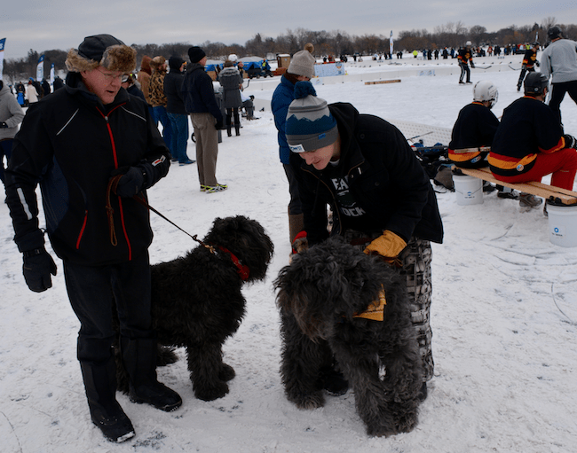 pond hockey spectators image