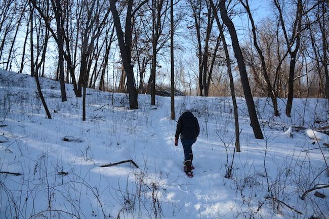Snowshoeing Benefits image
