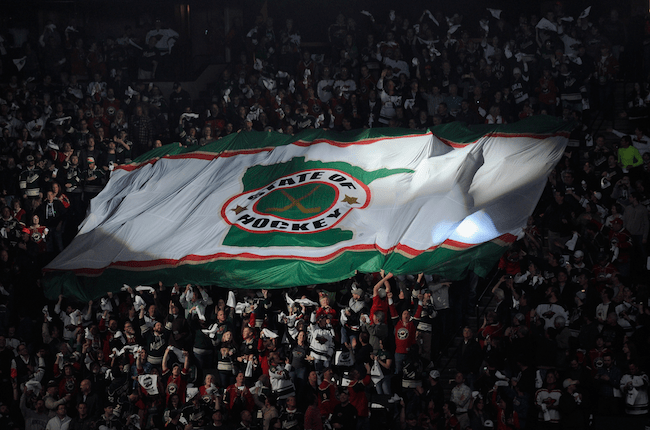 The Minnesota Wild and The State of Hockey image