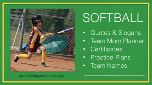 Softball Coach and Team Parents Resources image