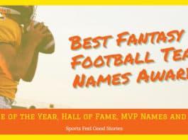 fantasy football team names awards image