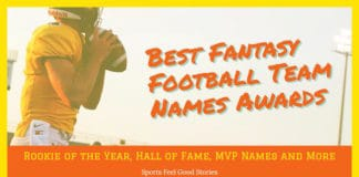 fantasy football team names awards image