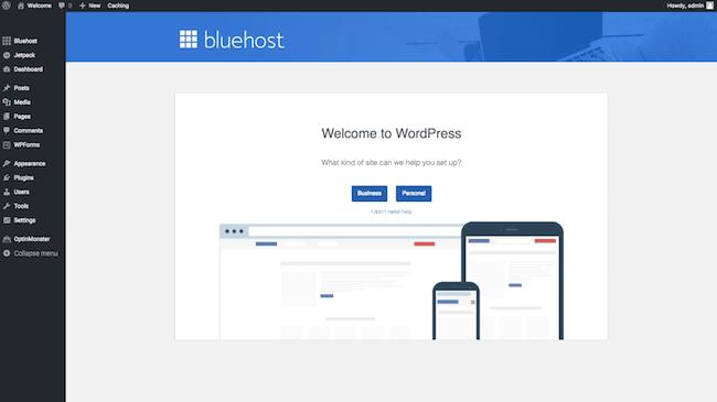 11 WP Dashboard screenshot