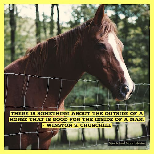 Churchill quote on horses image