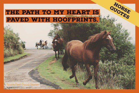 Hoofprints to my heart quotation