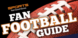 Chicago Bears Fan Guide image