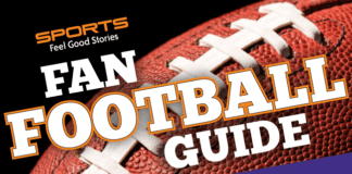 Minnesota Vikings Fan Guide image