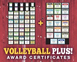 DELUXE Volleyball Plus Bundle image