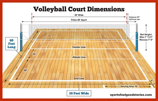 picture relating to High School Football Field Diagram Printable known as Volleyball Court docket Proportions, Website Sizing and Peak Sports activities