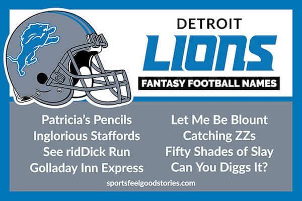funny fantasy football team names Detroit Lions image