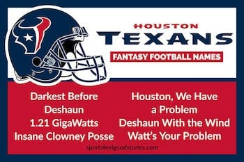 Houston Texans Fantasy Football Team Names button