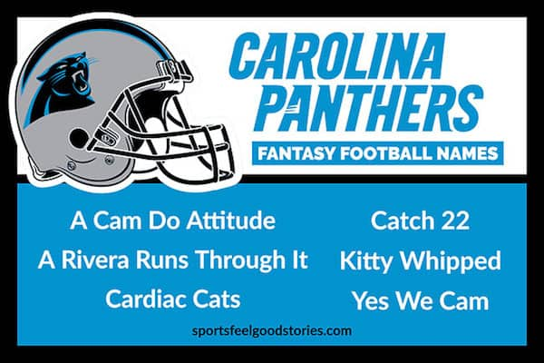 Panthers Fantasy Football Names image
