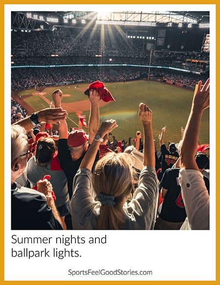 Summer nights and ballpark lights image