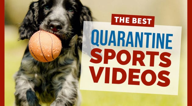 Quarantine sports videos image