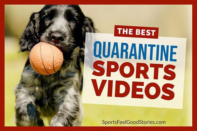 best quarantine sports videos image
