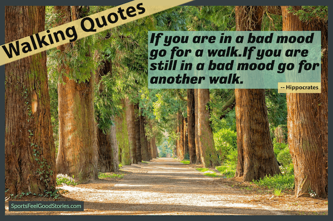 go for a walk sayings