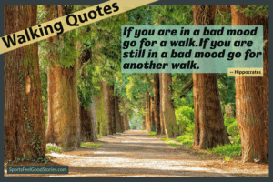 Hippocrates - walking quotes