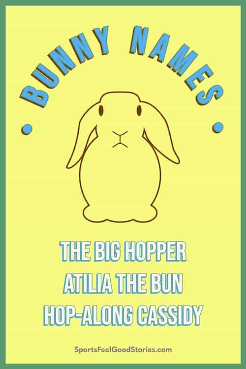 Best bunny names meme