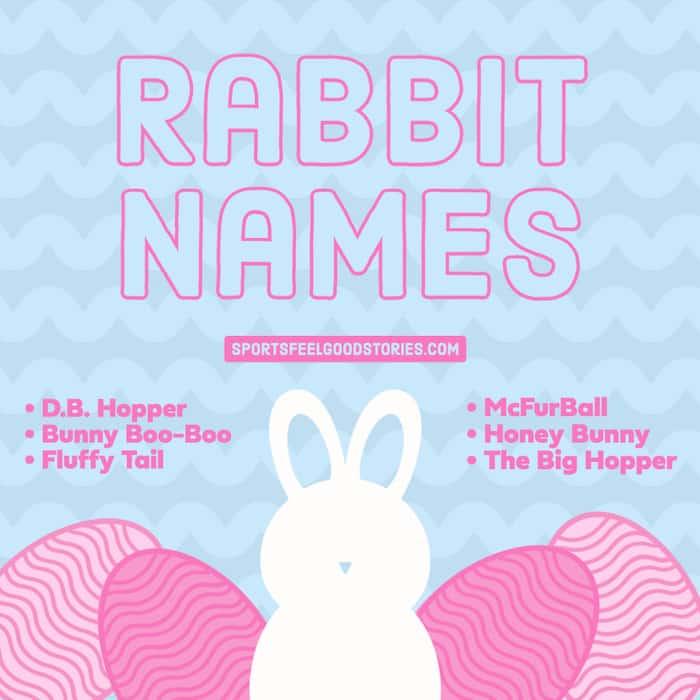 Good Rabbit monikers