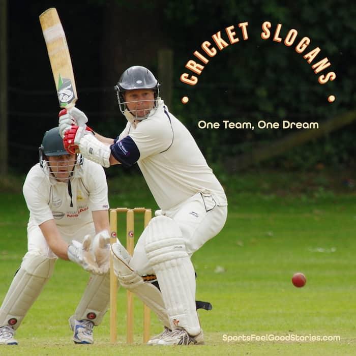 Best cricket slogans