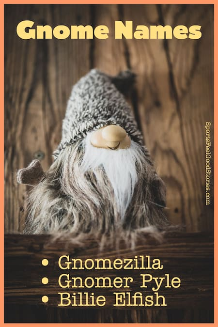 Naming ideas for gnomes