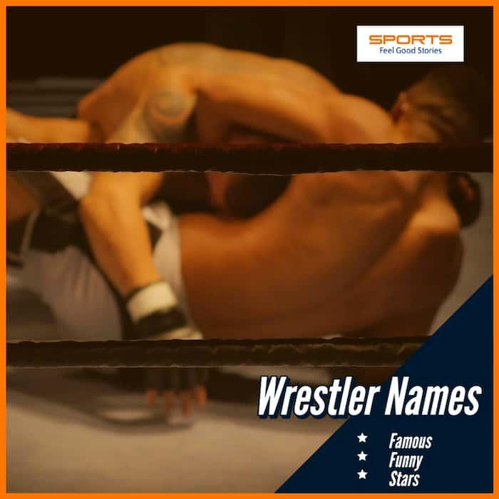 good wrestler names